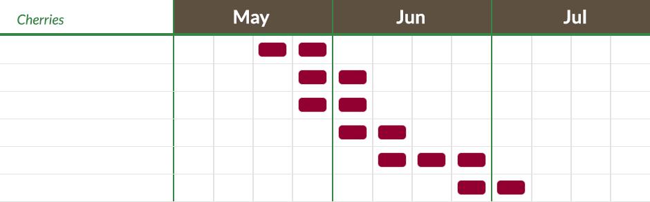 cherry-harvest-calendar